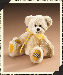 #38 Elliott Sadler Boyds Bear