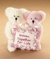 Carin And Carrie Bearywell Boyds Bear