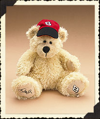 Dale Earnhardt, Jr. #8 Boyds Bear