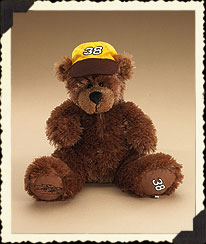 Elliott Sadler #38 Boyds Bear