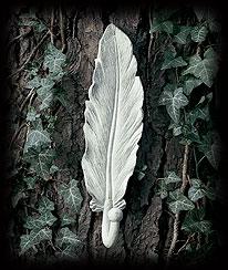 Feather Wall Hook Boyds Bear