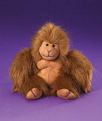 Ollie Boyds Bear