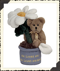 Potsie Daisydew Boyds Bear
