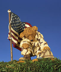 Roony...proud To Be An American Boyds Bear