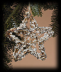 Small Ice Star Ornament Boyds Bear